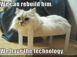 monorail+cat.jpg