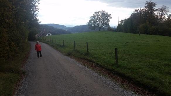 zurich-ridge-02